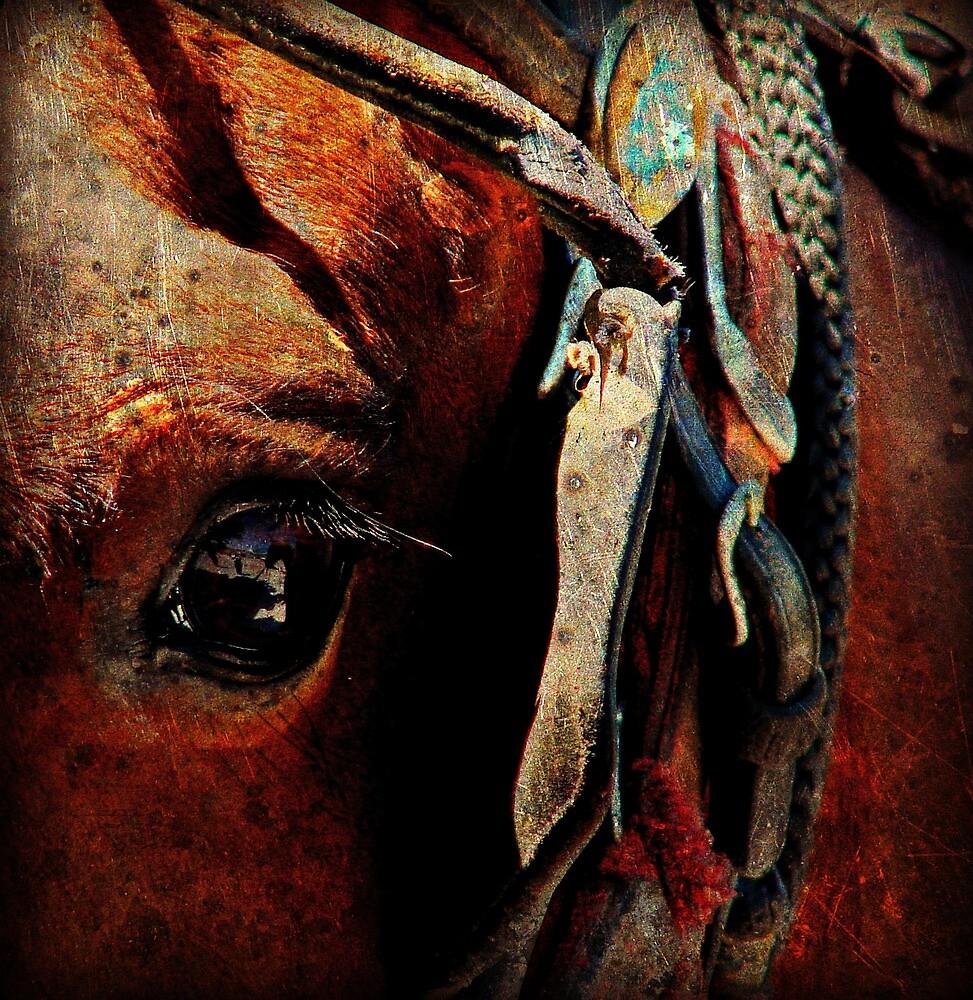 Amish Horse Eye Grunge by angelandspot