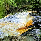 Laughing Whitefish River by brusling
