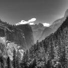 Yosemite Valley by Shaina Haynes