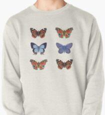 Butterflies Pullover