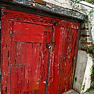 Double Red Door by Susan Werby