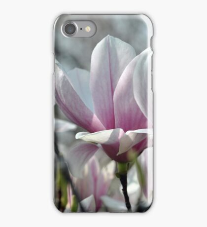 Magnolias 2013 iPhone Case/Skin