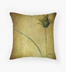 ) | Throw Pillow
