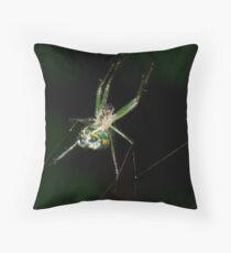 venusta orchard spider Throw Pillow
