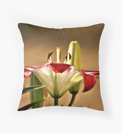 White and Pink WOW Throw Pillow