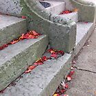 City Steps by Colleen Drew