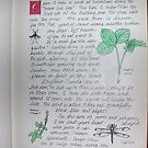 Page 5-Nature Journal by annimoonsong