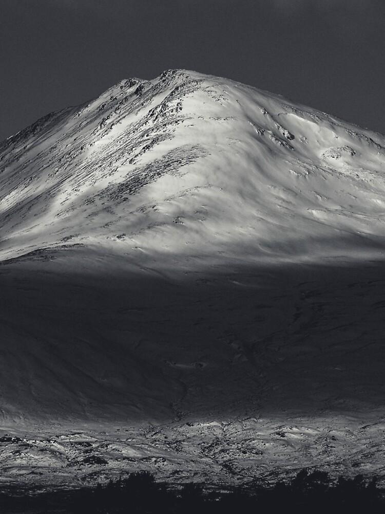 «Let's go to the mountains» par patricemestari