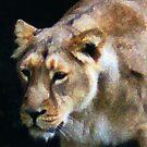 Lioness by Wayne Gerard Trotman