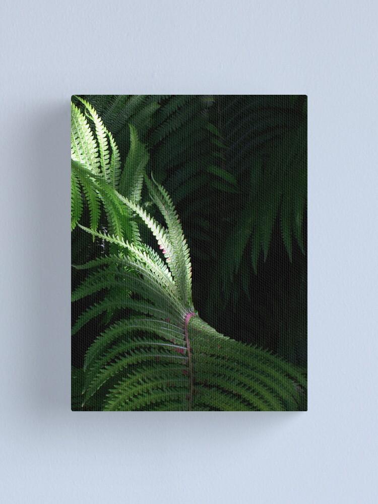 Alternate view of Fern Canvas Print