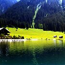 Austrian Alps by Wayne Gerard Trotman
