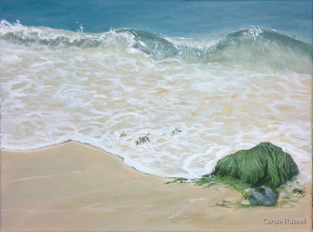 Seaweed and sand by Carole Russell