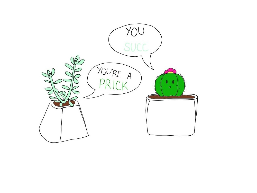 fighting succulents by marinp