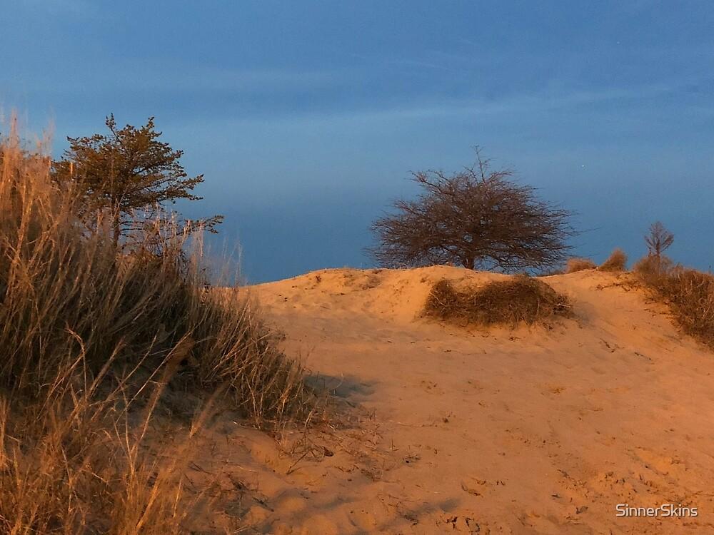 Sunset Dunes by SinnerSkins