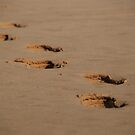 footsteps by steveault