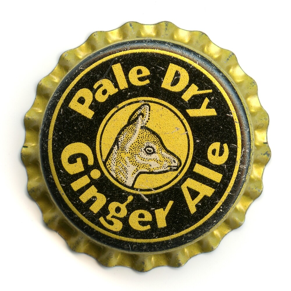 pale dry ginger ale by QueenofCrowns