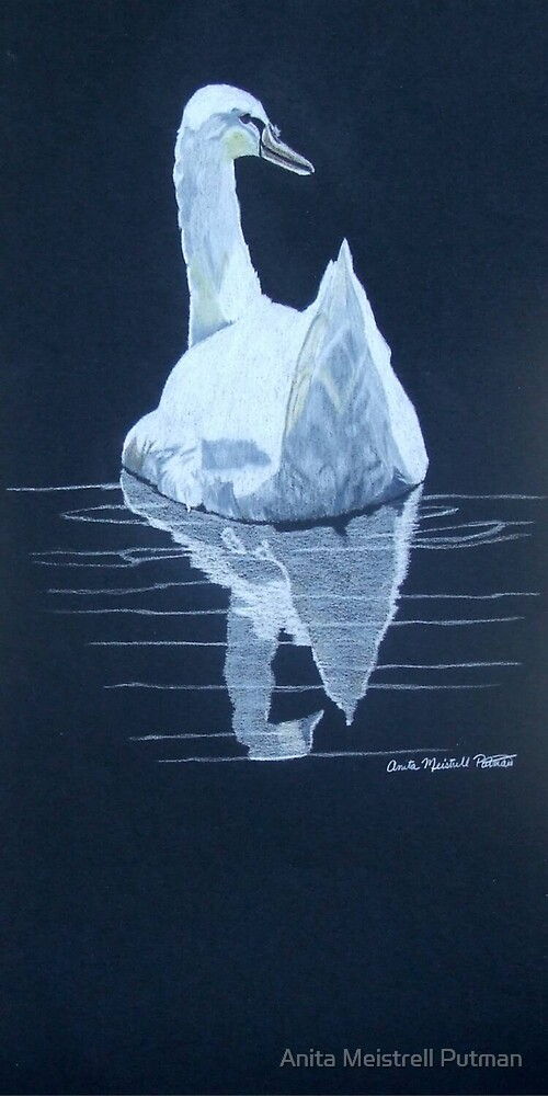 Reflection by Anita Putman