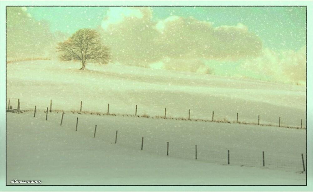 Winter Wonder by ecannon11