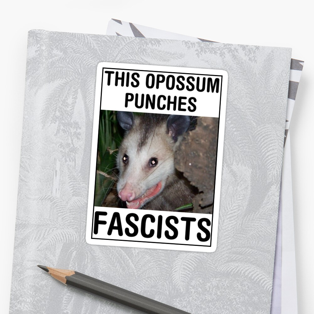 This opossum punches fascists by Phosfate