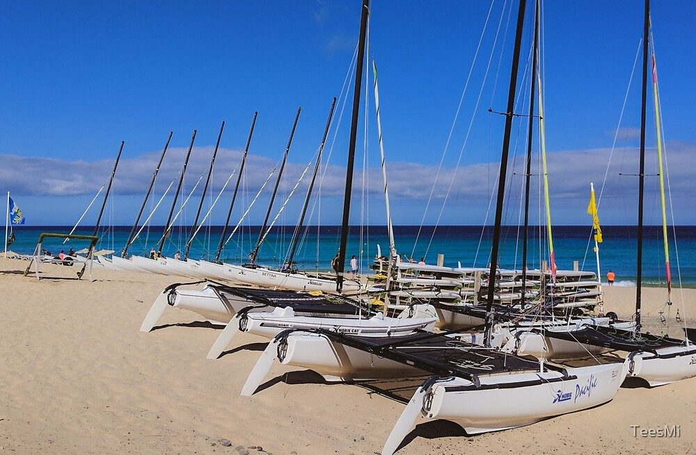 Sailboats in the sand by Gary Moore