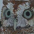 Hooty Who? Screech Owl Detail by Anita Putman