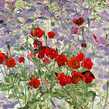 red poppies by mindgoop
