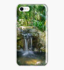 Faux Falls iPhone Case/Skin