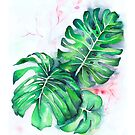 Monstera lieves by IsabelSalvador