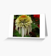 Droopy Coiffure Greeting Card