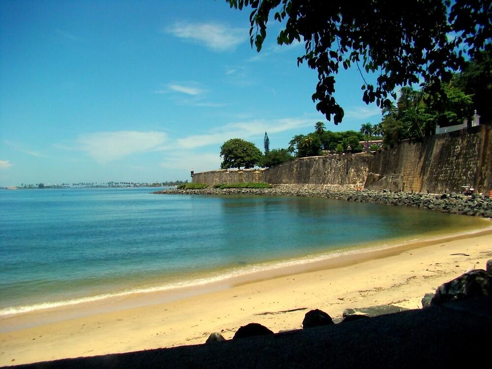 Puerto Rico Me Encanta   by Elizabeth Rodriguez
