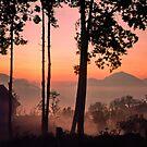 Kintimani, Bali by John Spies