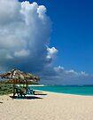 Anegada Beach Loblolly Bay by DARRIN ALDRIDGE