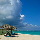 Anegada Beach by DARRIN ALDRIDGE