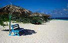 Turquois Seat In B.V.i. Paradise by DARRIN ALDRIDGE