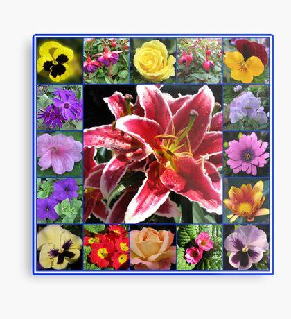 Auswahl an Sommerblumen Collage Metallbild