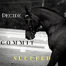 Decide, Commit, Succeed Meme- Dressage Dreamers by DressageDreams
