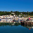 Summer Harbour - Lyme Regis by Susie Peek