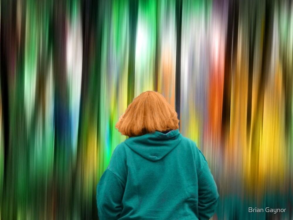 The Rainbow Forest by Brian Gaynor