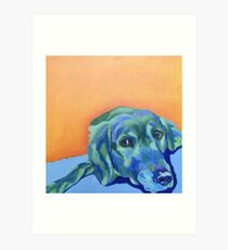 Blue Labrador Dog Art Print