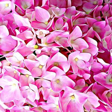 Pink Hydrangea by JudyPalkimas