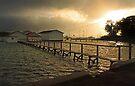 Mosman Bay Boatsheds At Dawn  by EOS20