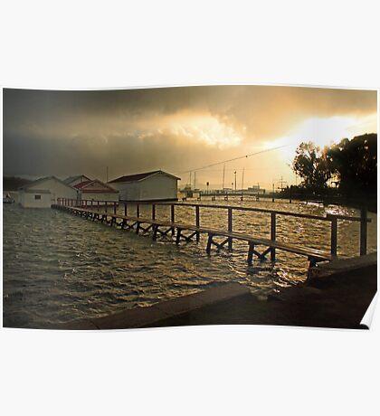Mosman Bay Boatsheds At Dawn  Poster