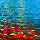 Fishy by bubblehex08