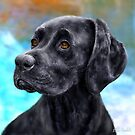 Painting of a Black Labrador on a Blue and Brown Background by ibadishi