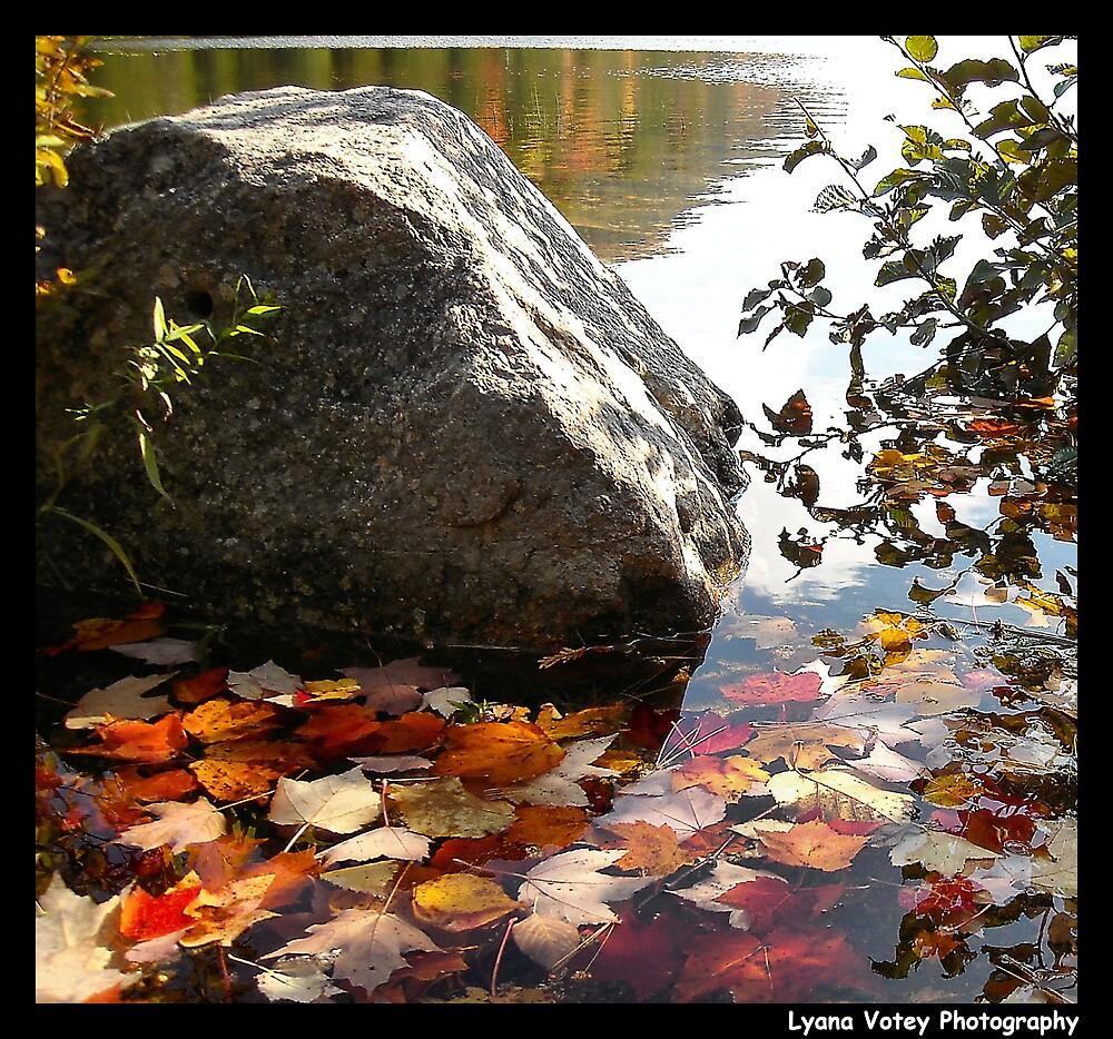 Fallen Leaves by Lyana Lynn