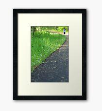 Nature Path Framed Print