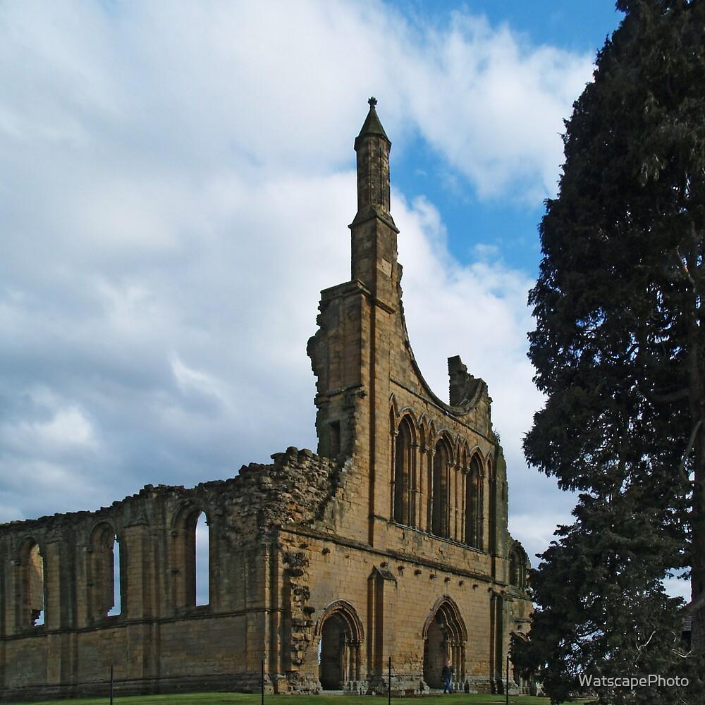 Byland Abbey 5a by WatscapePhoto