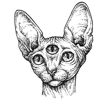 Third Eye Sphynx Cat by clarafornia