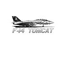 F14 Tomcat VF-103 Jolly Rogers by CoolCarVideos
