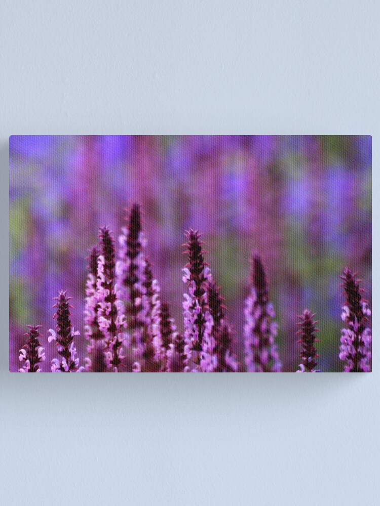 Alternate view of What The Impressionists Saw Canvas Print